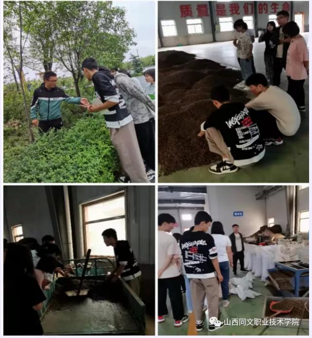 2019级中药学专业学生正式入企参加轮训